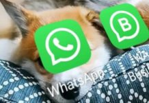WhatsApp Updates Terms and Privacy Policy: Accept or Lose Access to App